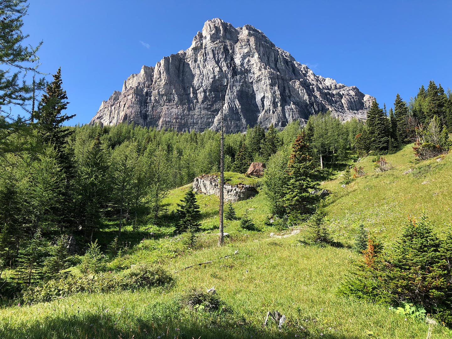 """Featured image for """"Virtual Tours in the Canadian Rockies"""""""